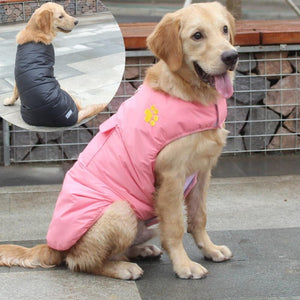 A Dog Wearing The Pink Double Sided Dog Vest