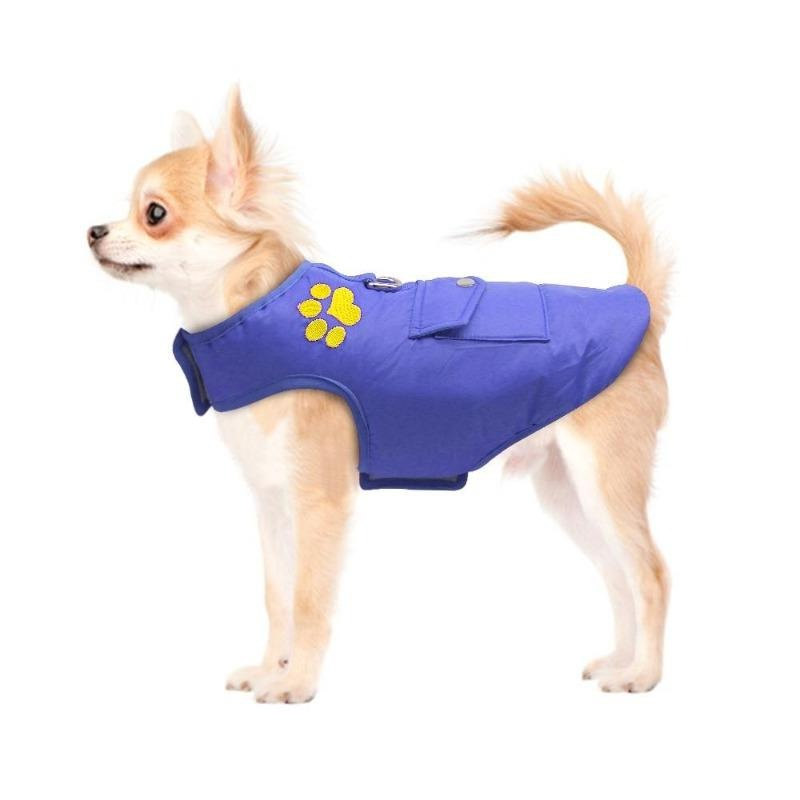 A Dog Wearing The Blue Double Sided Dog Vest