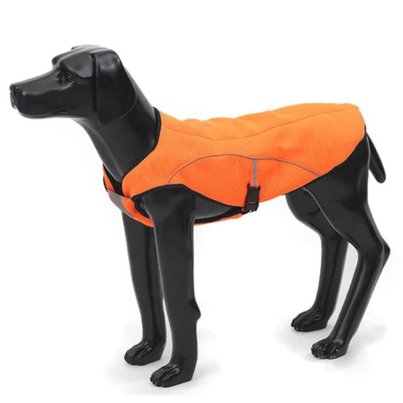 A Dog Wearing An Orange Air Mesh Cooling Dog Vest