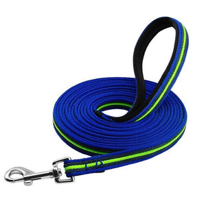 Blue-Green Long Training Dog Leash
