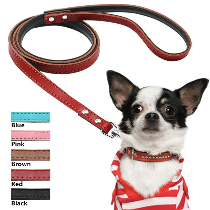 A Dog Wearing A Toggy Doggy Red Leather Dog leash
