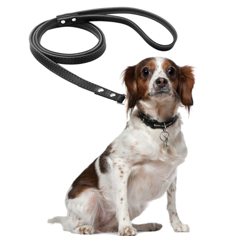 A Dog Wearing A Toggy Doggy Black Leather Dog Leash