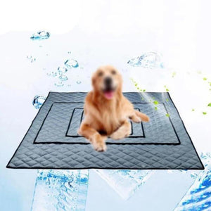 A Dog On A Gray Cooling Doggy Bed/Mat