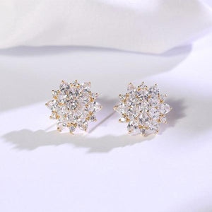 Exquisite Zircon Snowflake Earrings