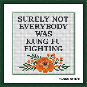 Surely not everybody was KUNG FU fighting funny cross stitch pattern
