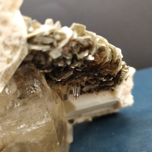 Orthose, Microcline et Muscovite (Papachacra, Argentine)