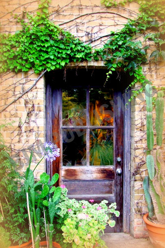 Greeting Card Garden - Shed door - Vertical