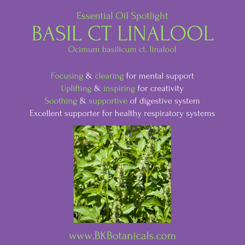Basil Essential Oil - Be Kind Botanicals