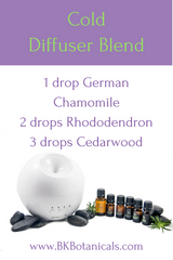 Cold Essential Oil Diffuser Blend - Be Kind Botanicals