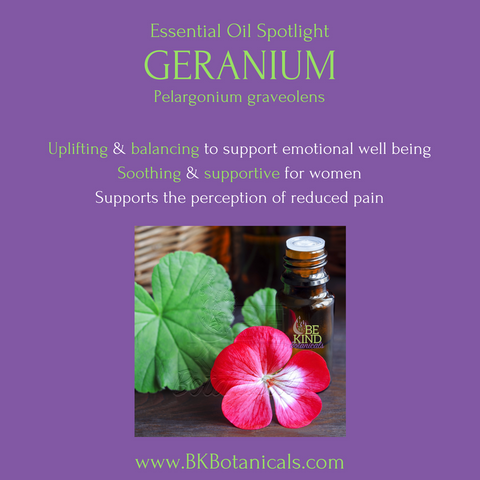 Geranium Rose Essential Oil - Be Kind Botanicals
