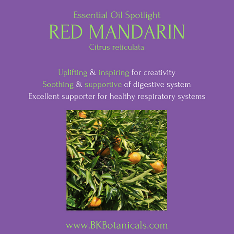 Red Mandarin Essential Oil - Be Kind Botanicals