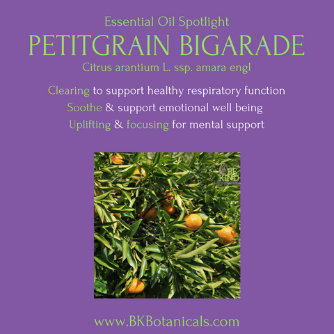 Petitgrain Bigarade Essential Oil - Be Kind Botanicals