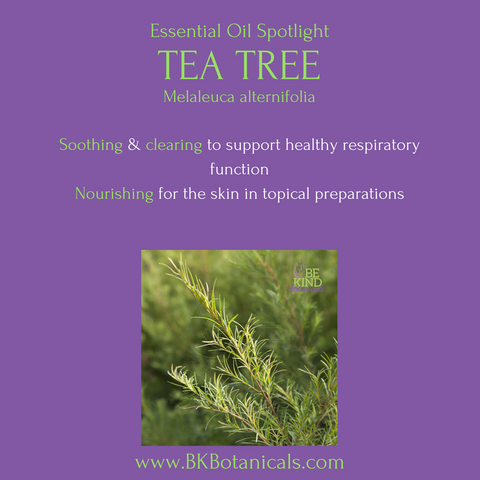 Tea Tree Essential Oil - Be Kind Botanicals