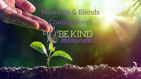Behind the Scenes at Be Kind Botanicals essential oil company