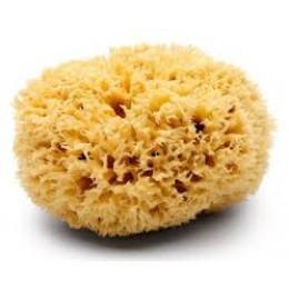 Premium Sea Wool Sponges