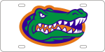 University of Florida License Plate