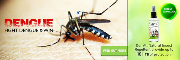 3 Best Types of Mosquito and Insect Repellents in Singapore