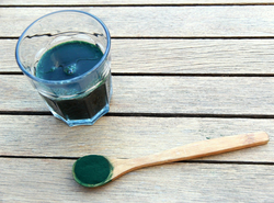 Superfoods for the Win: Chlorella vs Spirulina