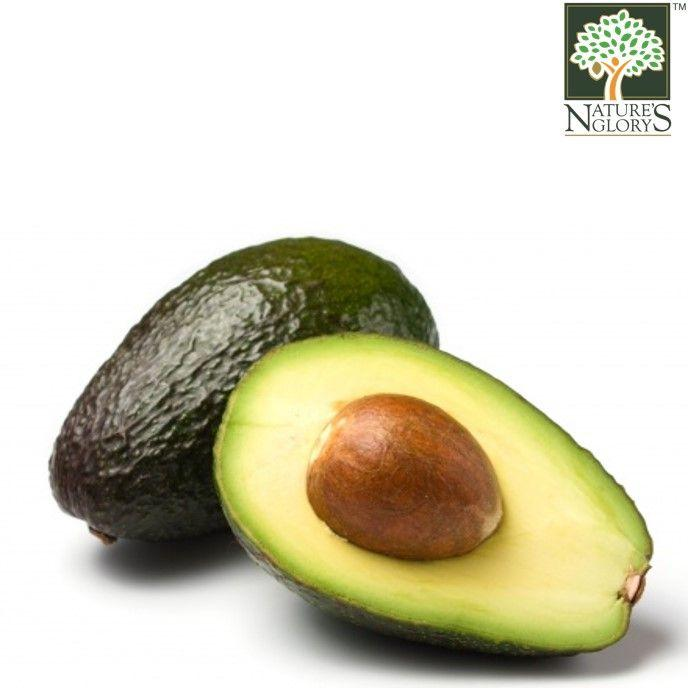 Avocado Aust 1 pcs OG.(NA 8131P) (Pre-Order Required)