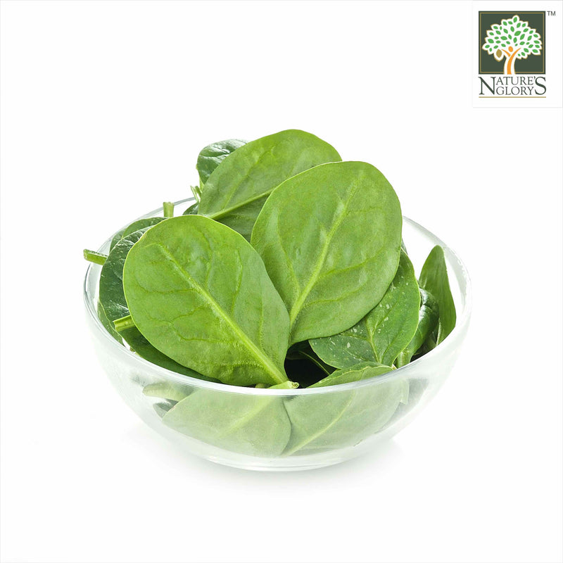 Baby Spinach Australia Organic (NA 8131P) in a Bowl