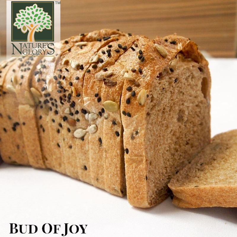 Bud of Joy Organic 100% Wholemeal 3 seed Loaf Bread (Freshly Baked)
