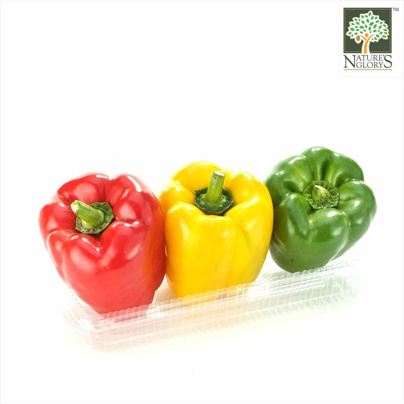 Capsicum OG. (1 box 2-3 pc)