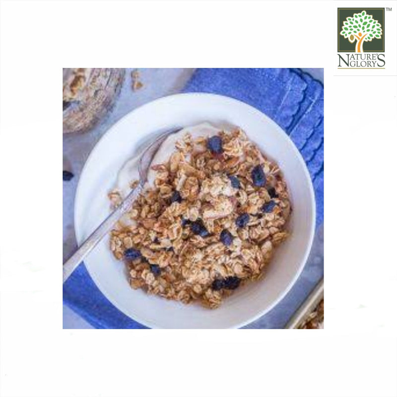 Organic Blueberry Almond Granola SunRidge Farms 397g