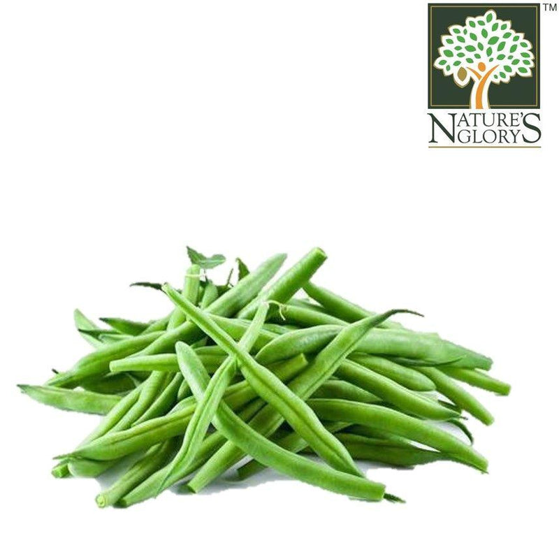 French Bean Thai Organic