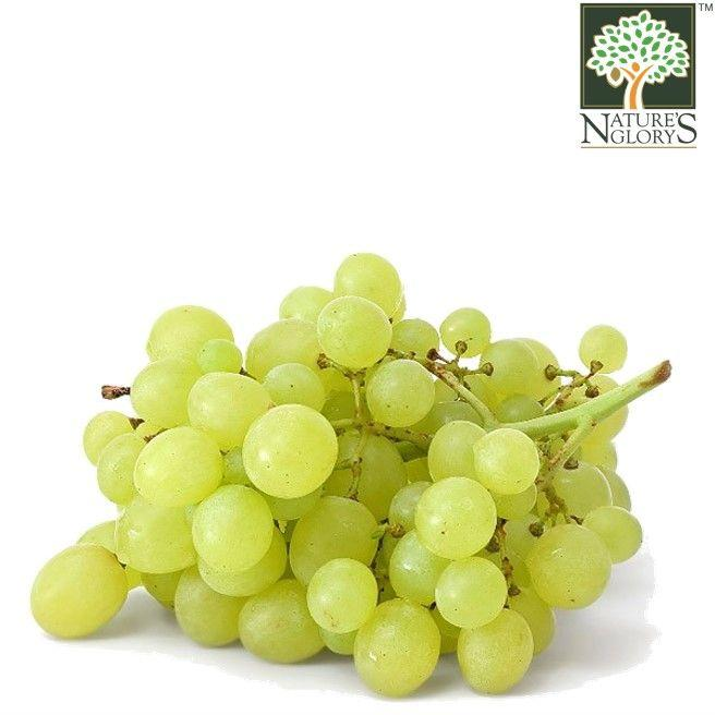 Grape (Green) Aust OG.(NA 8131P) (Pre-Order Required)