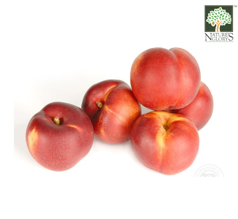 Nectarines Australia 1 box Organic. (NA 8131P) (Pre-Order Required)