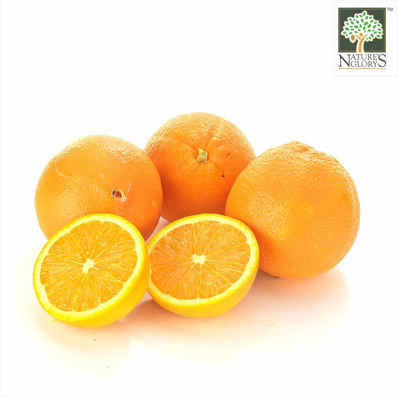 Orange(Valencia) Aust  OG. (NA 8131P) (Pre-Order Required)