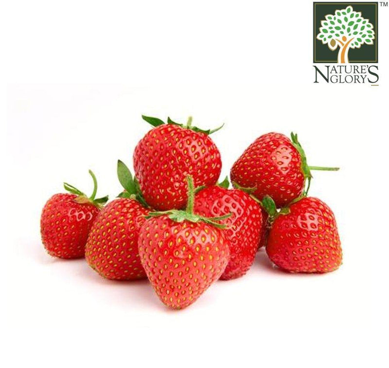 Strawberries Aust OG.(NA 8131P) (Pre-Order Required)