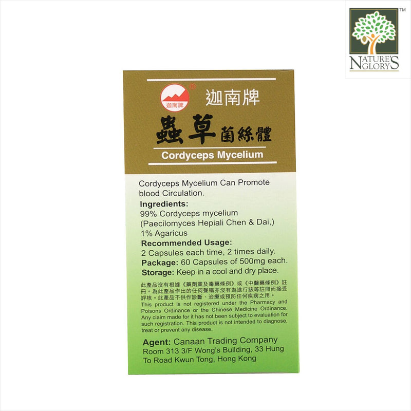Super Cordyceps 500mg (60 caps) Box Cover - Product Description View 1