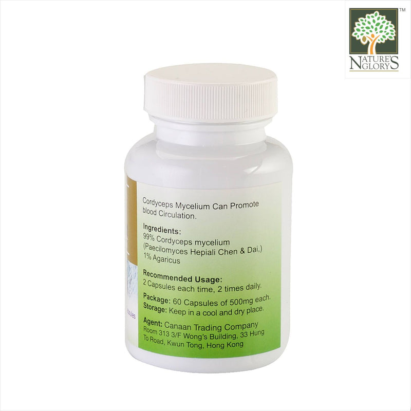 Super Cordyceps 500mg (60 caps) - Product Description View 1