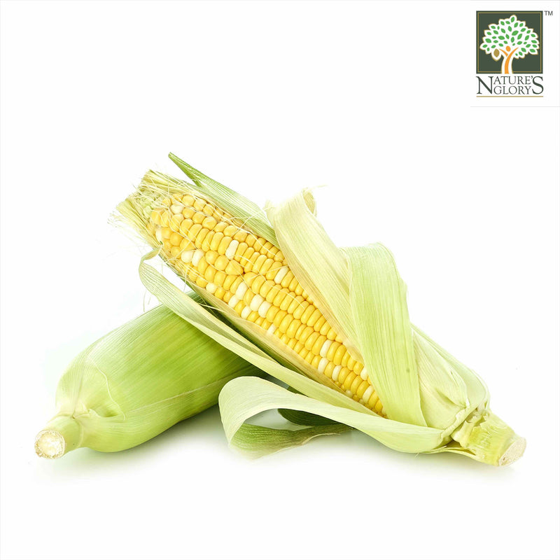 Sweet Corn Thai Organic