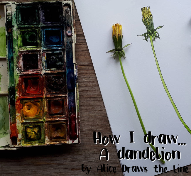 How I draw... a dandelion