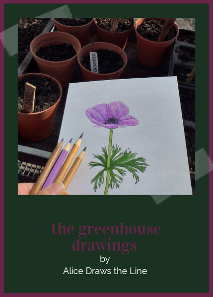 The Greenhouse drawings