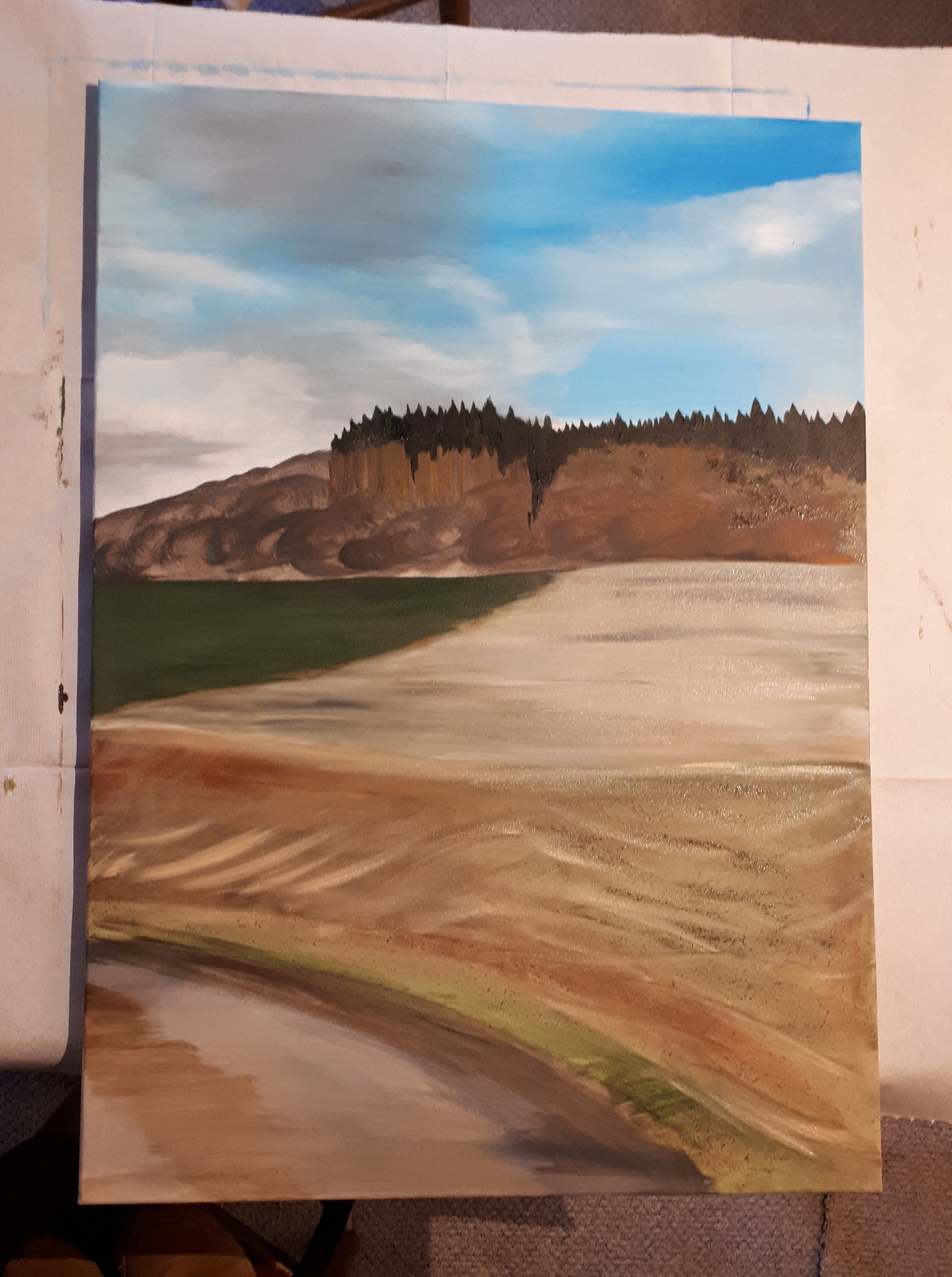 A1 landscape picture work in progress by Alice Draws the Line