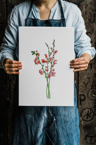Seasonal botanical blooms by Alice Draws The Line