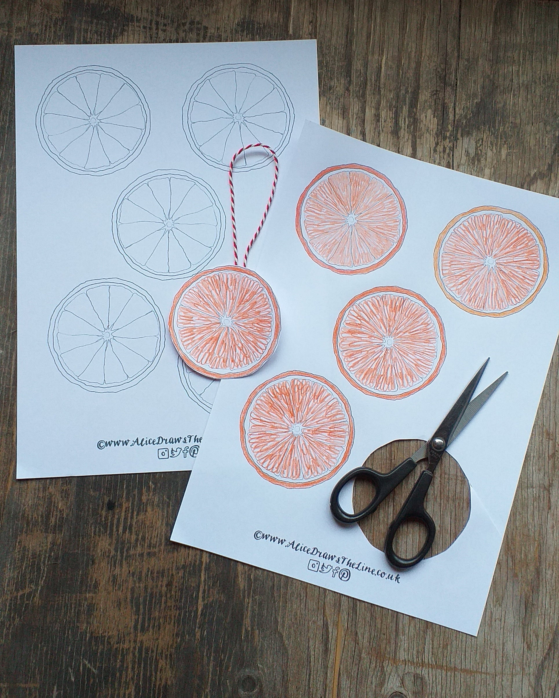 Festive paper bauble to make at home by Alice Draws the Line, free botanical colouring in sheet