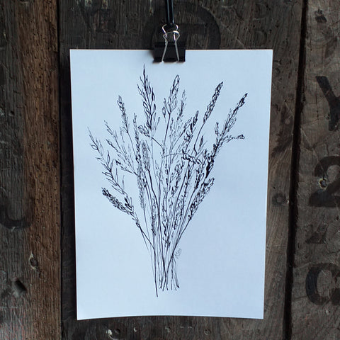 Grasses bouquet by Alice Draws the Line, black ink original, drawn with a homemade feather quill