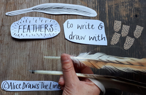 Making a quill pen from a feather by Alice Draws The Line