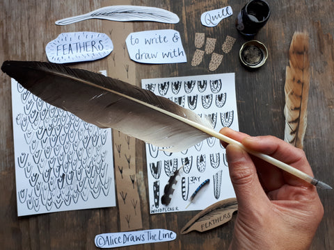 Feather quill pen made at home by Alice Draws The Line