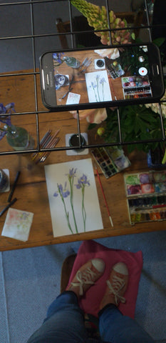 Filming set up for Alice Draws The Line, botanical illustrations filmed as a time-lapse