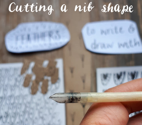 shaping the feather to make a nib for the quill