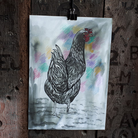 The Hen by Alice Draws the Line, original black ink drawing