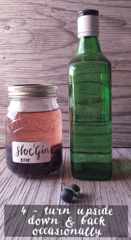 How to make sloe gin by Alice Draws The Line stage four