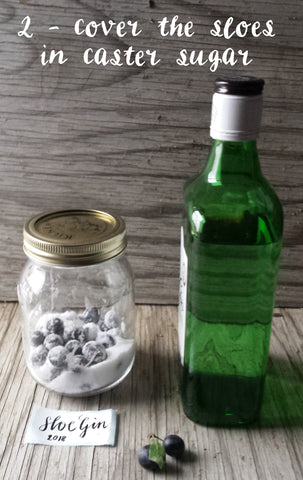 How to make sloe gin by Alice Draws the Line stage two