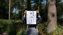 Load image into Gallery viewer, Woodland Alphabet print by Alice Draws The Line, printed on recycled paper, A4 or A3