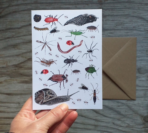 Bug card by Alice Draws The Line, mini-beasts galore, blank inside and printed on recycled card